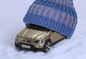 Χειμερινή προστασία