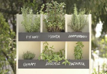 Φτιάξε τον δικό σου έξυπνο κήπο με μυρωδικά! #spitips