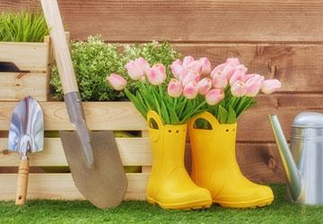 Ημερολόγιο εργασιών κήπου!