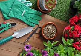 Διαλέγοντας εργαλεία για τον κήπο