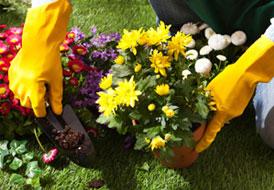 Εργασίες στον κήπο την άνοιξη