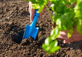 Μάθετε τα πάντα για το χώμα