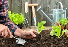10 μυστικά που κάθε επίδοξος κηπουρός πρέπει να ξέρει!